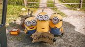 In Usa, i Minions scalzano Inside Out