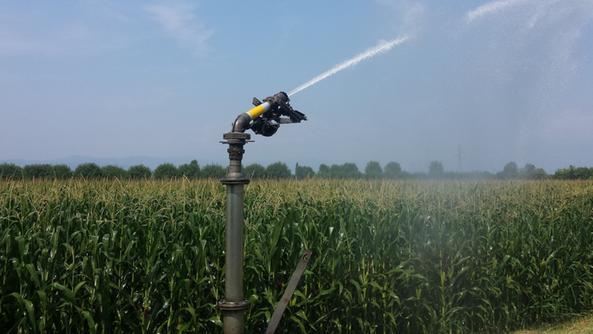 in 500 rubano l acqua per i campi thiene il giornale