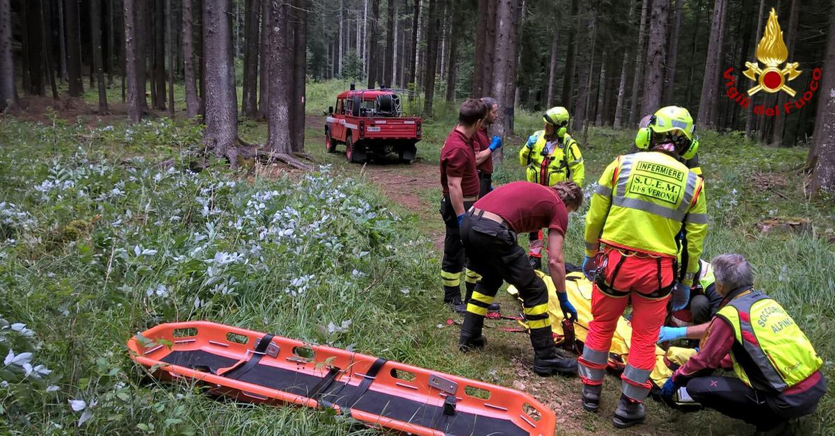 cercatore di funghi sviene nel bosco interviene elicottero