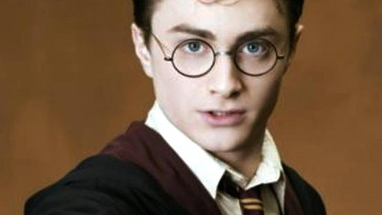 Il maghetto Harry Potter