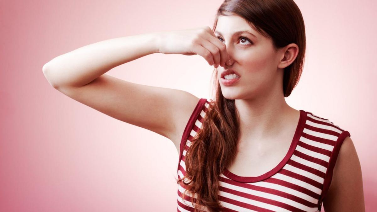 A scuola di odori per annusare le puzze dell'aria - Il Giornale di Vicenza