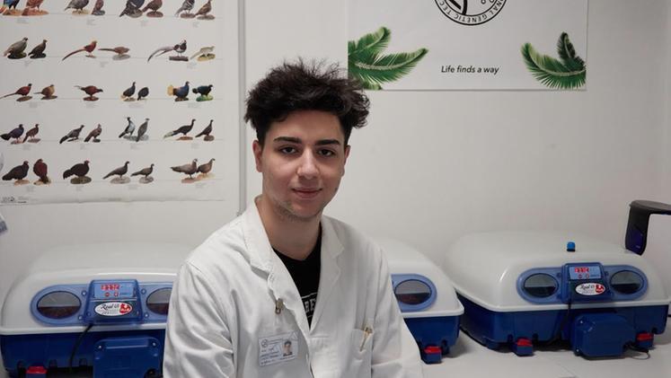 """Il """"creatore"""" 19enne di InGen: «Le specie già estinte torneranno a vivere»"""